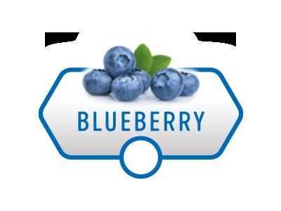 shootaz_blueberry